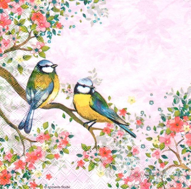 Serwetka Do Decoupage Ptaki